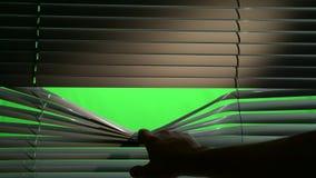 Humano abre horizontalmente cortinas do jalousie Tela verde filme