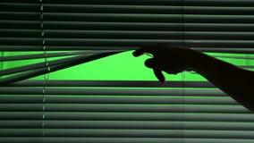 Humano abre o jalousie horizontalmente de suspensão Tela verde video estoque