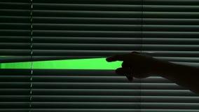 Humano abre o jalousie horizontalmente de suspensão Tela verde vídeos de arquivo