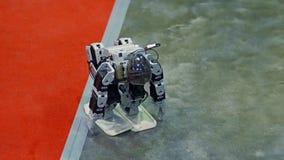 Humanoidrobotdans stock video