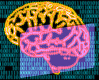 Humans brain and binary code. Illustration of the humans brain and binary code Stock Photography