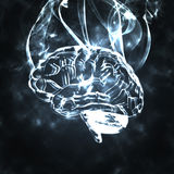 Humans brain in the smoke. Illustration of the burning humas brain in smoke Stock Photography