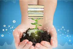 Humans hands holding plant with ground and books. Humans hands holding plant with ground on colorful background Royalty Free Stock Photo