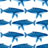 Humback鲸鱼 无缝的水彩样式 库存照片
