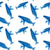 Humback whale. Seamless watercolor pattern Royalty Free Stock Images