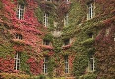 Humboldt Hochschulbibliothek Lizenzfreie Stockfotografie