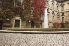 Humboldt Hochschulbibliothek Stockfoto