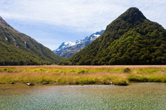 Humboldt Mountains seen from Routeburn Track, NZ Stock Image