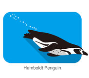 Humboldt Penguin, Penguin seed series, vector illustration Royalty Free Stock Images