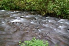 Humbug creek Royalty Free Stock Images