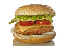 Humburger royalty-vrije stock foto's