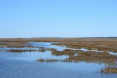 Humedales costeros cerca de una isla costera meridional Imagen de archivo libre de regalías