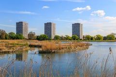 Humedales de Woodberry en Londres Foto de archivo libre de regalías