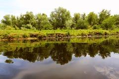 Humedales del delta de Danubio Imagen de archivo