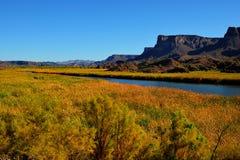 Humedales del río Colorado Imagen de archivo libre de regalías