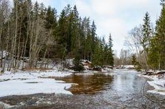 humedales escénicos con el lago o el río del país en invierno Imagen de archivo libre de regalías