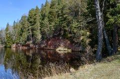 humedales escénicos con el lago o el río del país en verano Fotos de archivo