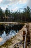 humedales escénicos con el lago o el río del país en verano Fotografía de archivo libre de regalías