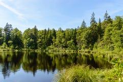 humedales escénicos con el lago o el río del país en verano Imagen de archivo libre de regalías