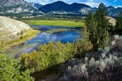 Humedales/río, Columbia Británica Canadá de Columbia imagenes de archivo