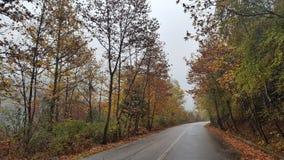 Humeur d'automne image stock