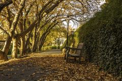 Humeur d'automne dans Princeton, New Jersey images stock