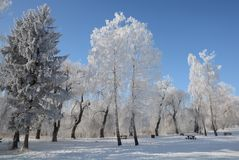 Humeur d'hiver photographie stock