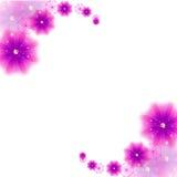 Humeur de fleur Images libres de droits