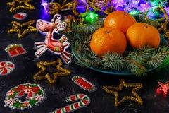 Humeur de Noël, cerfs communs, décor de vacances, branches de pin et mandarines sur le fond foncé photo stock