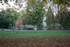 Humeur de repos dans le Stadtgarten à Essen images libres de droits
