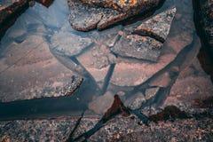 Humeurig rivierbed stock foto's