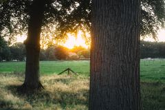 Humeurig zonsondergang ofer platteland Stock Foto