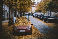 Humeurige dag in de stad Oranje, gele bladeren op de auto's tijdens een de herfstperiode De stad van Praag in Europa Dalingsachte royalty-vrije stock fotografie