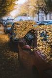 Humeurige dag in de stad Oranje, gele bladeren op de auto's tijdens een de herfstperiode De stad van Praag in Europa Dalingsachte stock fotografie