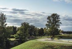 Humeurige Foto van de Weg in een Park, tussen Desaturated Hout -, stock foto