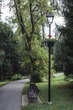 Humeurige Foto van de Weg in een Park, tussen Desaturated Hout -, royalty-vrije stock foto