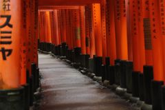 Humeurige weg op Fushimi Inari Taisha, Kyoto, Japan royalty-vrije stock afbeeldingen