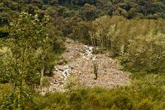Humid andean moor landscape in Oyacachi, Ecuador Stock Photography