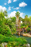 Humid tropical jungle. Beautiful landscape of humid tropical jungle. Tropic Stock Images