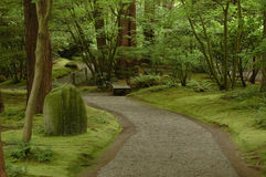 Humid walkway in Japanese garden Royalty Free Stock Photo