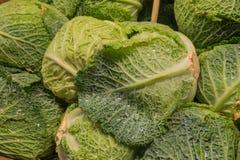 Humides végétaux de chou frais avec de l'eau, se ferment  Photographie stock libre de droits