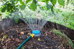 Humidification compost pile using sprinkler Stock Photo