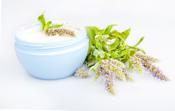 Humidifying cream and melissa flowers. Isolated on a white background Royalty Free Stock Image