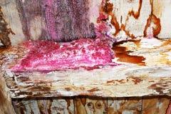 Humidité sur la vieille structure de maison photos libres de droits