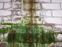 Humidité sur le mur image libre de droits