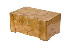 humidor πούρων Στοκ φωτογραφία με δικαίωμα ελεύθερης χρήσης