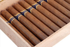 humidor сигар Стоковое Изображение RF