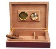 Humidor aperto con i sigari Fotografie Stock