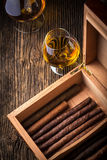 Humidor with quality cigar and cognac Stock Photography