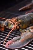 Hummer auf dem Grill Lizenzfreies Stockbild
